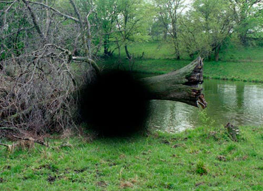 Farm Pond, from the Black Holes and Blind Spots series, 2010-ongoing