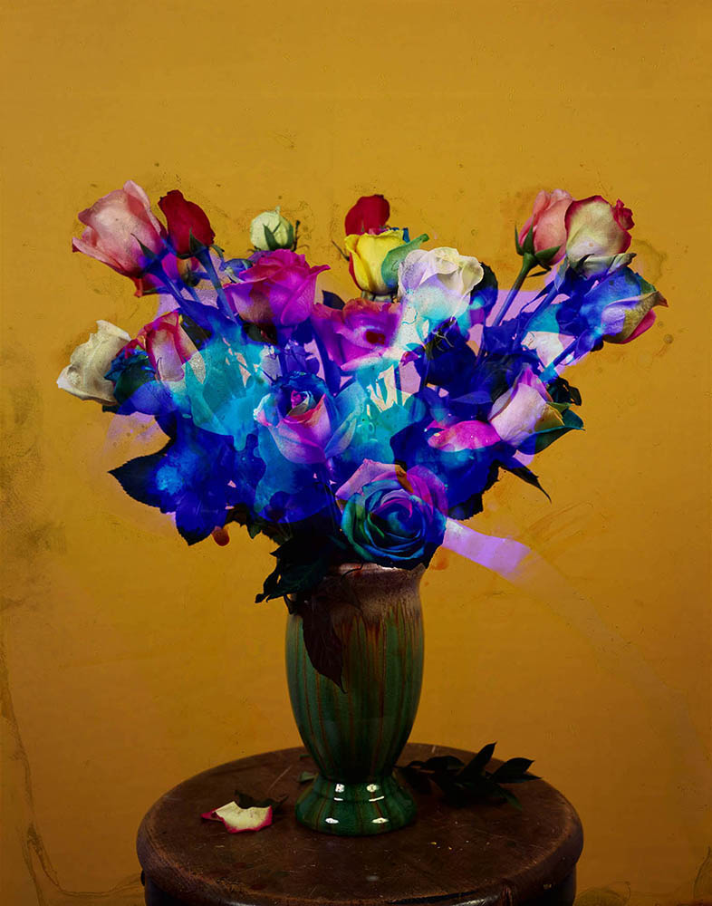 "Bouquet No. 4, from the ""Potpourri"" series, 2012"