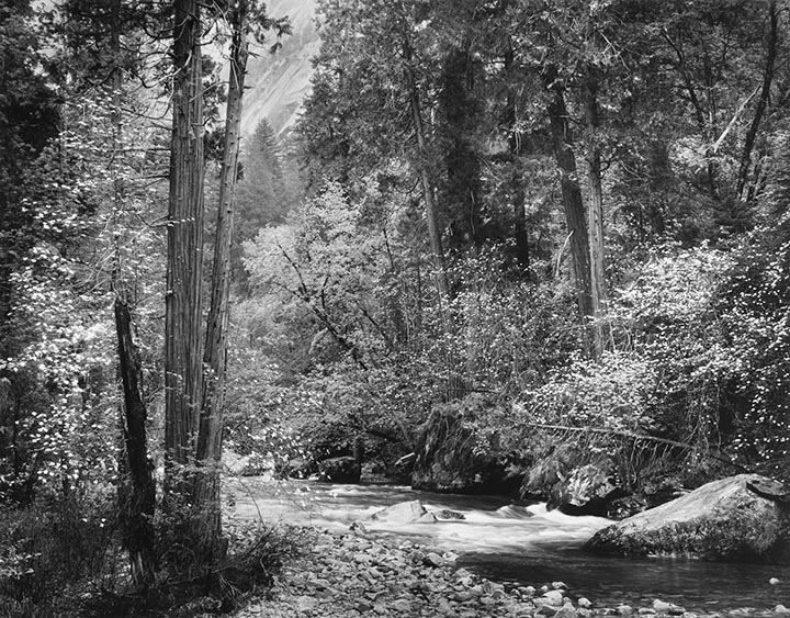 Tenaya Creek, Dogwood Rain, Yosemite Valley, California
