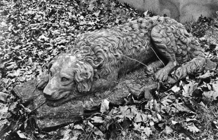 Stone Dog, Chippiannock Cemetary, Rock Island, Illinois