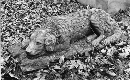 Stone Dog, Chippiannock Cemetary, Rock Island