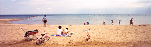 North Avenue Beach, Chicago, from Changing Chicago