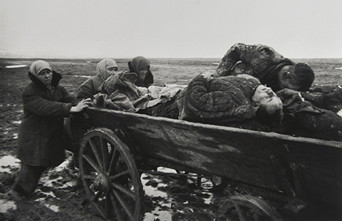 Carting the Dead, Kerch, Crimea, January 1942