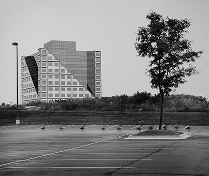View of Metro West Building with Canadian Geese, from Changing Chicago