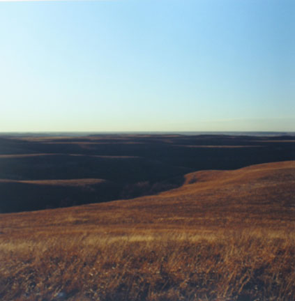 Konza Prarie, near Manhattan, Kansas, January 1985
