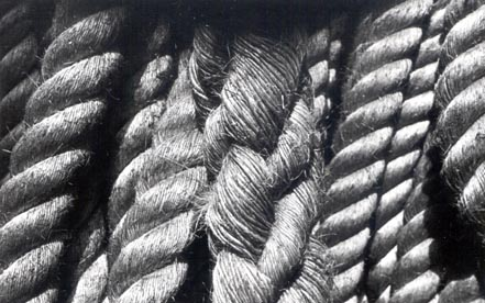 Untitled (detail of heavy rope)