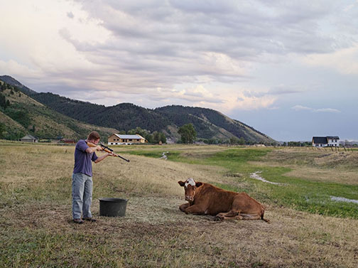 Adam Killing a Cow, Mortensen Family Farm, Afton, Wyoming