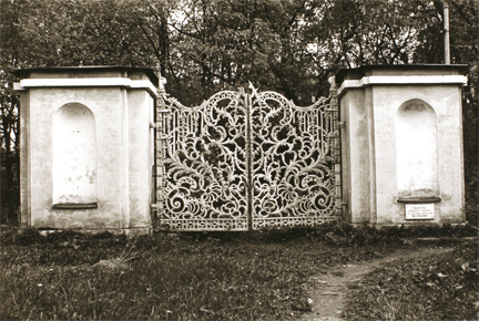 Untitled (iron gate in woods)
