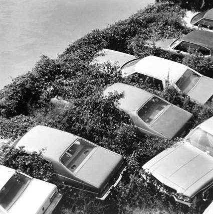 View of Junked Cars from Ogden Bridge at Division Street, from Changing Chicago