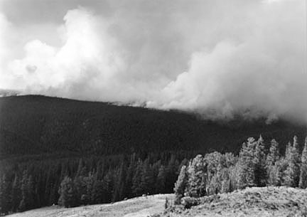 Forest Fire, Yellowstone #2, August