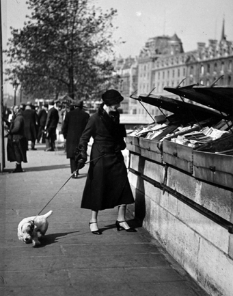 Paris (walking dog along book stalls)