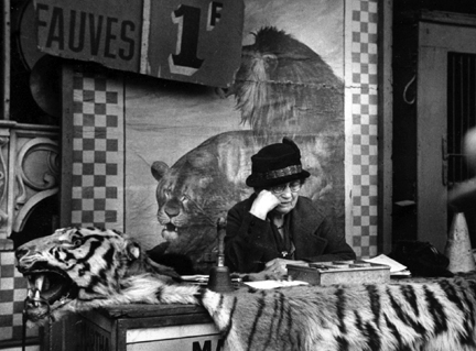 Fauves (woman reading over tiger skin)