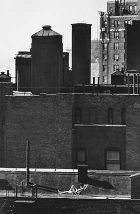 Untitled (woman sunbathing on roof reading)