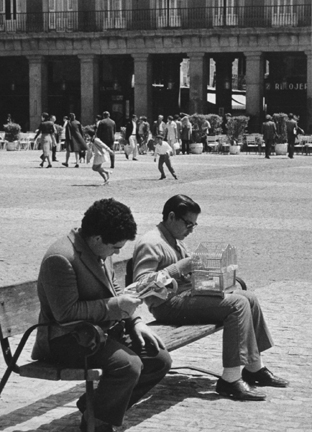 Madrid (man reading and young man with birdcage)