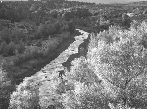 4 - SW -  Virgen River, Near Rockville; Utah (nr. St. George),