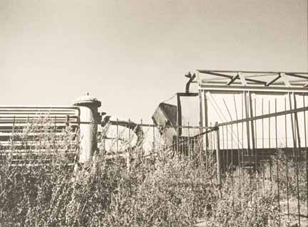 Untitled (weeds, fence, machinery)