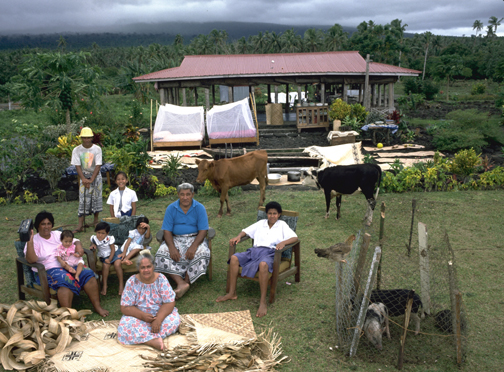 The Lagavale Family, Poutasi, Western Samoa, 5:00 p.m., October 8, 1993