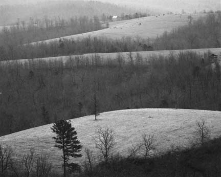 Rolling Hills and Frost, from the Ozark portfolio