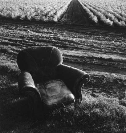 Chair and Asparagus Field, from the Delta portfolio
