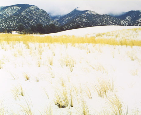 Snow and Grass, Colorado, From
