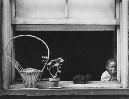 Child, Basket and Cat in Window