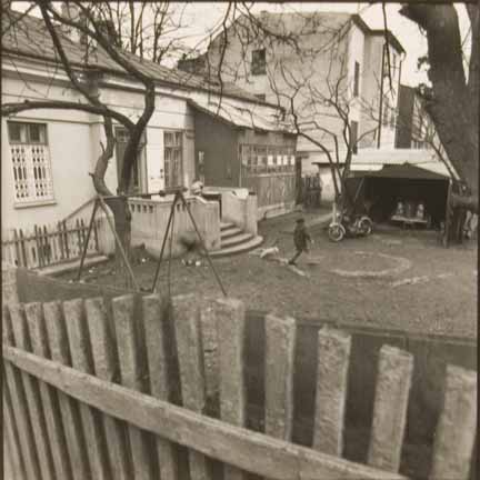 Chernovitz (boy in backyard)