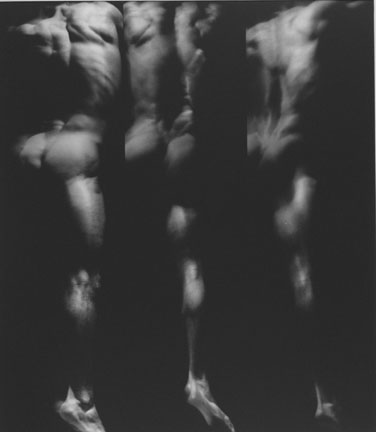 Three Studies from the Human Body in Movement, 19 December 1989, Chicago Studio