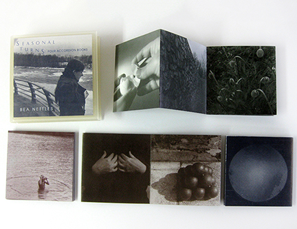 Seasonal Turns: Four Accordion Books