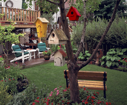 Birdhouses - Chicago, Illinois, 2000