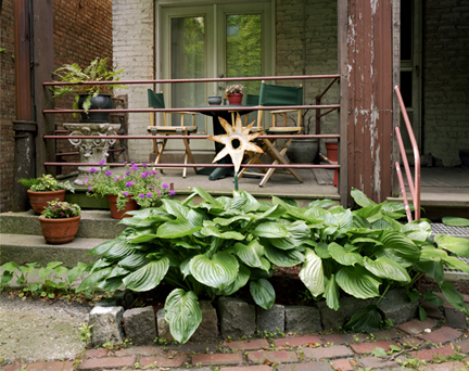 Star & Hosta - Chicago, Illinois, 2004