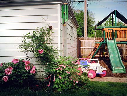 Bleeding Hearts & Barbie Jeep