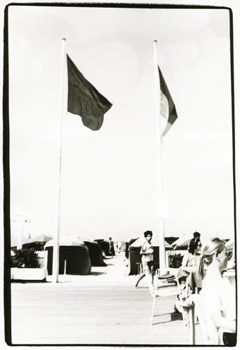 Flag Poles at the Beach